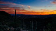 Cactus Says Good Night (CEBImagery.com) Tags: sunset arizona cactus sky sun mountain black creek desert valley cave geolocation geocity exif:make=sony geocountry camera:make=sony geostate exif:focallength=24mm exif:aperture=45 camera:model=nex7 exif:model=nex7 exif:lens=e24mmf18za exif:isospeed=100