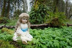 DSC01409.jpgdollpark (portugita_norton) Tags: park trees fern washington doll livingdoll bucoda