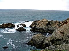 hargiscountry (ne0nicecream) Tags: isolation norcal bodegabay winecountry californiashore