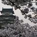 姫路城:姫路城 Himeji Castle