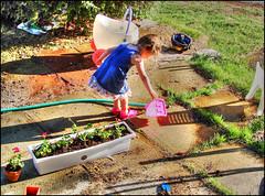 Gardening-II