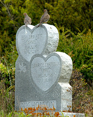 Morning Doves (M. Waller) Tags: ocean lighthouse home monument cemetery grave fog island heart bell maine newengland wyeth nicholson hopper monhegan morningdoves
