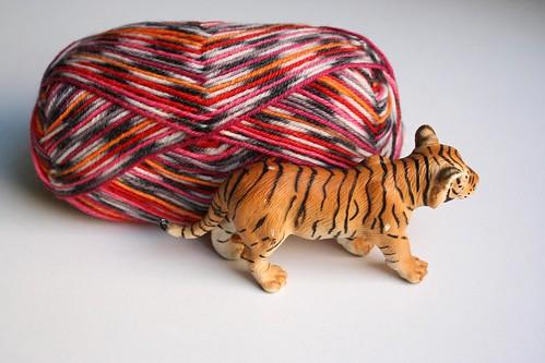 lã tigre