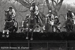 Racing in B&W (smcarterphotos) Tags: horses horse race cheval jump jockey rider pferd equestrian thoroughbred equine steeplechase