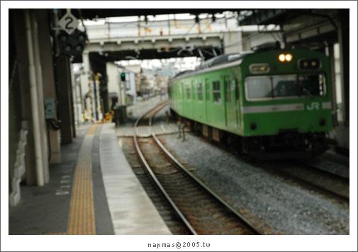 DSC_7439.jpg