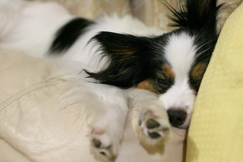 Good night... =)