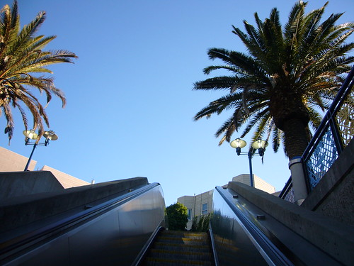 palms, 16th street bart station