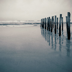 The beach in winter (borealnz) Tags: sea newzealand beach square sand stclair grain nz lith otago dunedin poles pilings toned bsquare litheffect infinestyle pentaxda14mmf28ed borealnz