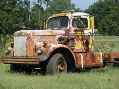 Colorful Truck (dbro1206) Tags: old truck rust rusty resting decayed whitemustang