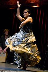 Baile Flamenco Sylvia de Paz    9873.jpg (hansspeekenbrink) Tags: amsterdam dance nederland thenetherlands hans 2008 baile flamenco dans paradiso flamencodancer hansspeekenbrink speekenbrink flamencodress flamencoshoes baileflamenco flamencodans sylviadepaz