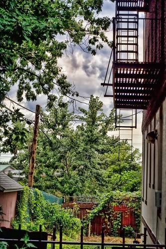 251/365 Urban Backyard
