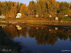 Carefree Bay (nutman2007) Tags: canada nature water reflections saskatchewan reflexions golddragon reidlake anawesomeshot diamondclassphotographer absolutelystunningscapes