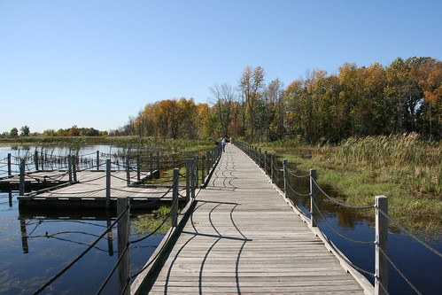 Boardwalk trail at Horicon NWR