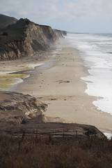 San Gregorio beach (ledges) Tags: williamscollege californiafieldseminar williamsmysticfall2008