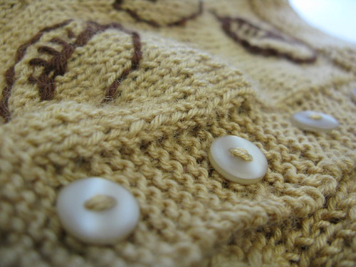 autumn baby sweater - button band