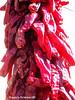 Fresh Red Chili Macro (phil_sidenstricker) Tags: macro nature produce flickrmeet chilis redchili donotcopy valleyofthesunphoenixmetro upcoming:event=981998 southmountainfarmphoenixusa