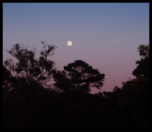 moonrise at dusk