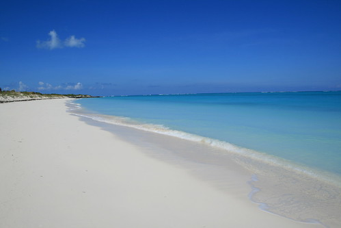 Parrot Cay (Turks and Caicos)