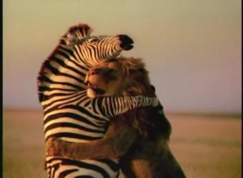 huggy