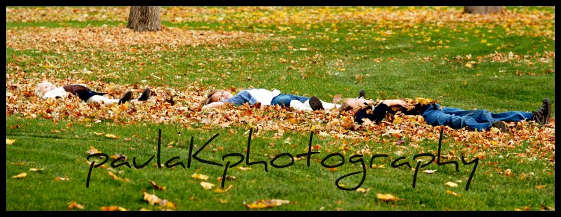 laying in the leaves