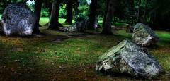 Allineamenti megalitici