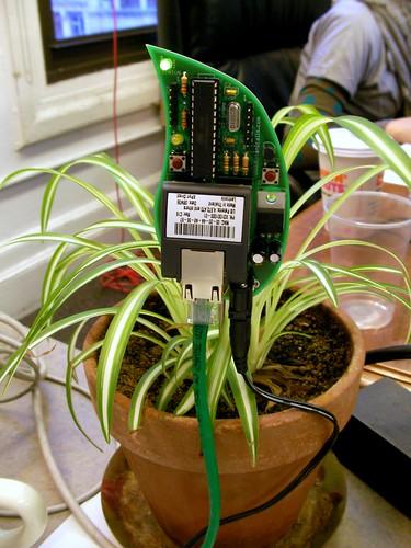 Botanicalls Kits