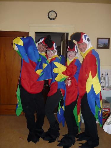 4 Parrots
