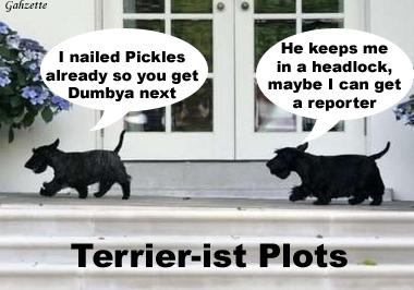 Terrier-ist Plots