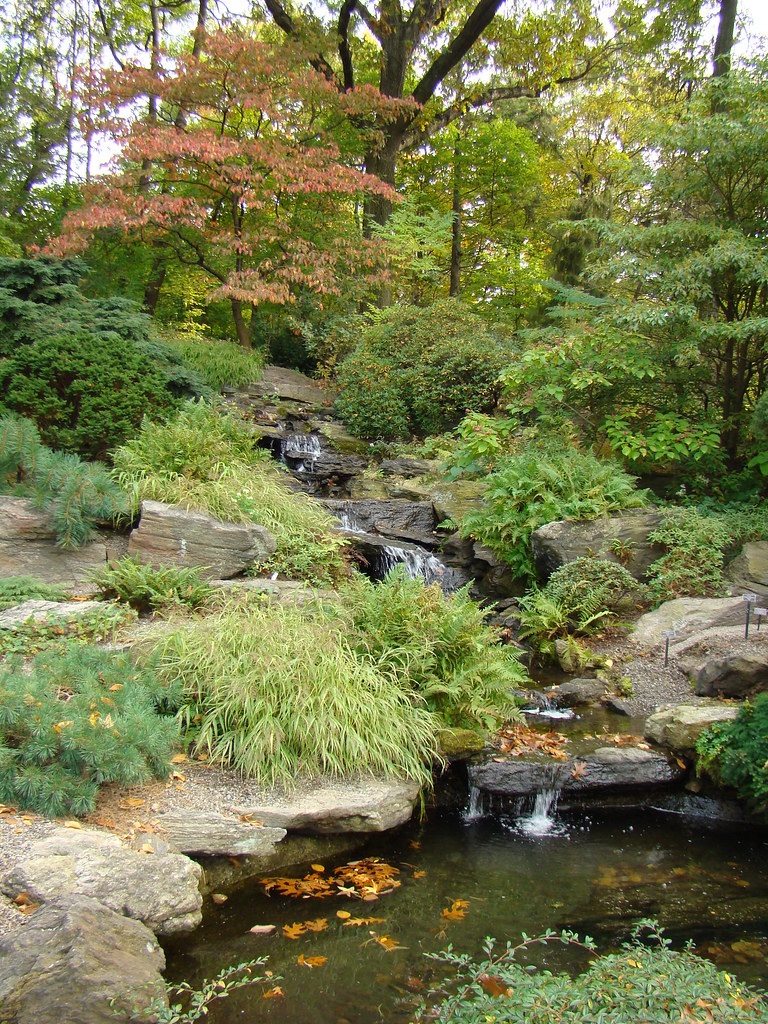 Tranquility by Design in the Rock Garden | NYBG
