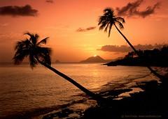 La gemme de la Martinique (view[  ]finder) Tags: sunset vacation holiday seascape film beach mediumformat martinique palmtrees caribbean 6x7 plage sillhouette palmiers coucherdesoleil nationalgeographic velvia50 travelphotography beachatsunset rocherdudiamant flickrsbest bronicags1 anawesomeshot pointedudiamant natureselegantshots obq thedantecircle tomfreda tomfredaphotography phoeniximmortal