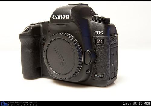 3117154246 1c0169b7a4 Canon 5D MKII: Primer contacto