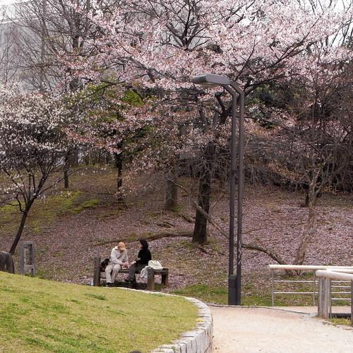 Shimizu-saka Park 02