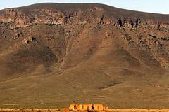 Tankwa National Park (Proteus250245) Tags: southafrica nationalpark südafrika westerncape overberg karoo tankwa westlichekapprovinz karru