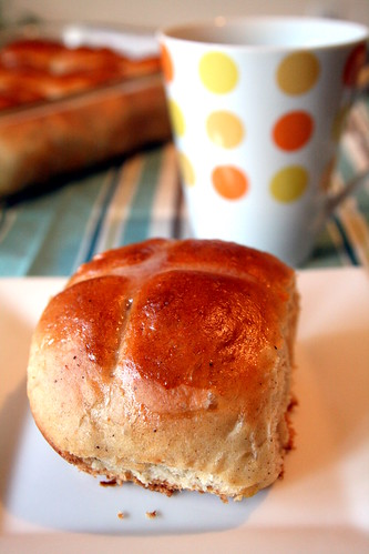 hor cross buns 035