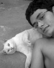 Apollo e Dinho (Cludio J. Gouveia) Tags: gato bicho dinho olhosverdes olhosazuis gatobranco