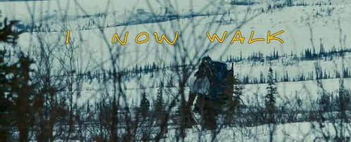 Into the Wild | EW.com