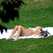 Central Park Bikini Sunbather