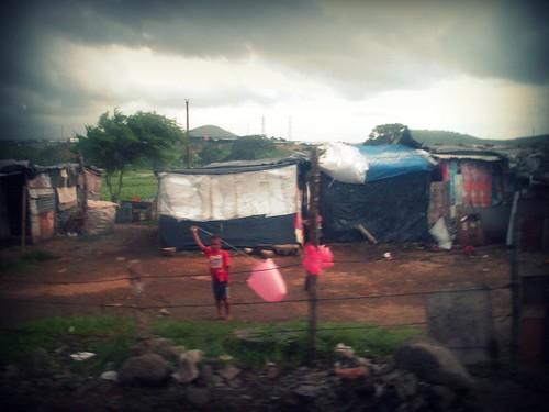 kite in the dump