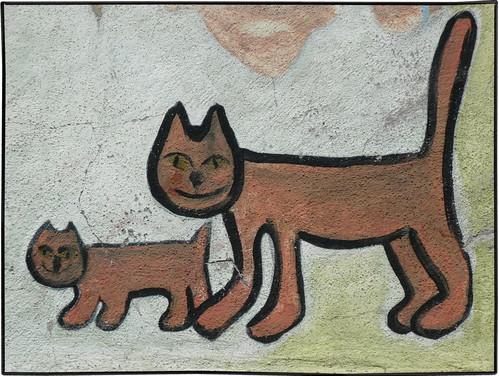 le véritable chat des villes ...