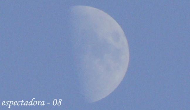 atardecer y la luna 018