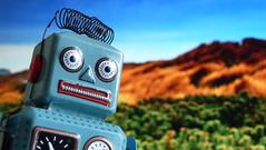Robot Vista