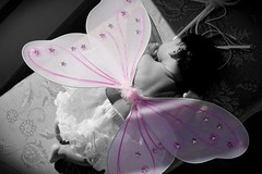 Spread your wings and let the fairy in you fly! ~Author Unknown (traci meyer) Tags: pink white black color angel wings fairy newborn selective naturalightkids shuttersisters