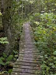 Hiking Trips In Halton Hills Ontario Canada Page Sorted By - 6 scenic hikes in halton hills