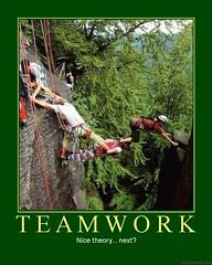 d teamwork (dmixo6) Tags: corporate team funny motivator spirit politics humor humour despair motivation parody demotivator dialogue cooperation demotivation dependence dmixo6