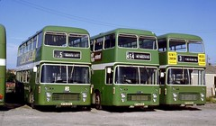 214-12 By 1982 the line up of Lodekkas in Weymouth yard had changed to VRs (Sou'wester) Tags: bus buses bristol vrt dorset publictransport weymouth vr lineup psv 555 ecw 551 southernnational 553 westernnational ata555l ata551l ata553k