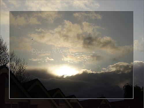 Grey's sky