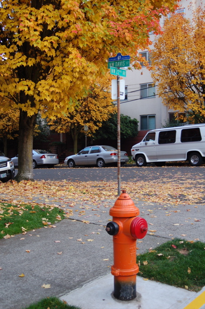autumn_st_level_match_hydrant