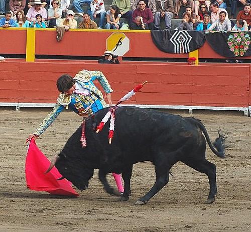 Fernando Roca Rey en Acho 2008