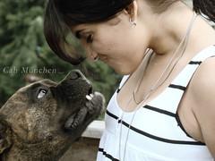 Leh & Mel (_chemicaldream) Tags: dog girl riodejaneiro dream mel boxer arabian leh chemical cahmünchen