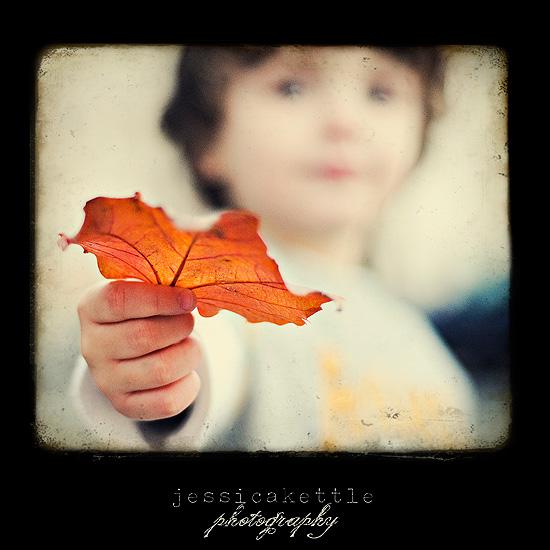 leavesforme